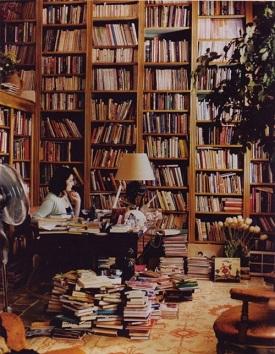 estudos literarios Viagens na Minha Terra   Almeida Garrett, Resumo, Características Livro