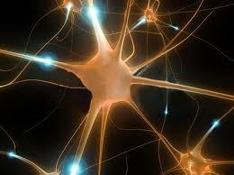 Resumo sobre Potenciais de Membrana
