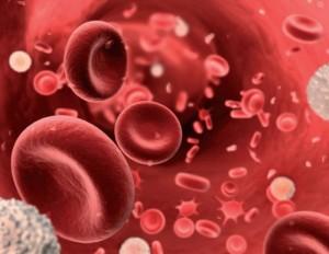 Anemia – Principais Tipos, Características, Sinais e Sintomas