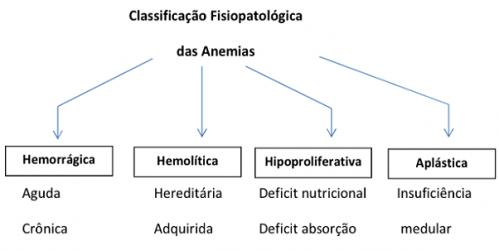 anemia-quadro-fisiologico