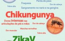 Zika Vírus e sua Relação com Microcefalia e Guillan-Baré no Brasil