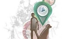 Leishmaniose Visceral e Cutânea: Clínica, Ciclo de Vida do Parasita